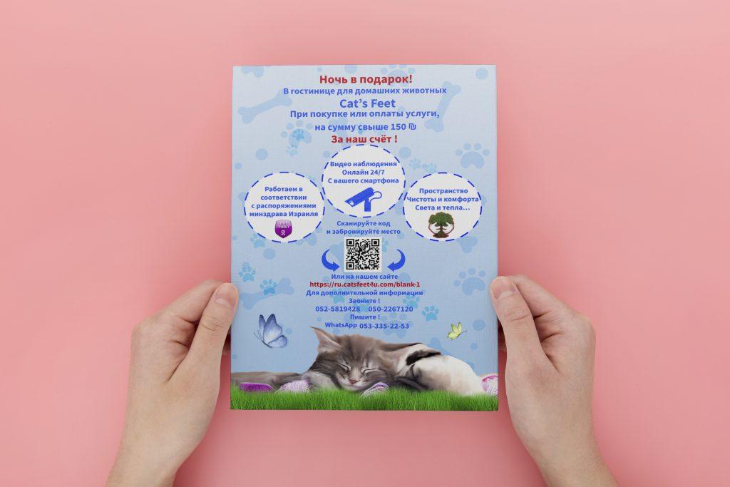 עיצוב פלייר לפנסיון חיות מחמד סטודיו מגה דזיין